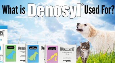 What is Denosyl Used For?