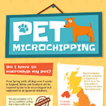 What You Need To Know About Microchipping Your Pet