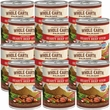 Whole Earth Farms Grain Free - Hearty Beef Stew Canned Dog Food (12x12.7 oz)