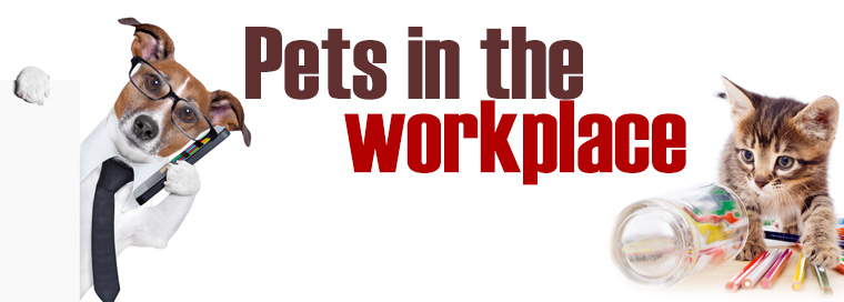 Why Banning Pets in the Office Could Get Your Company Fired