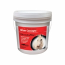 Wiser Concepts ElectrolyteWise Supplement for Horses (20 lb)