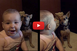 Wow, a Baby and a Dog Talking!? Now We've Seen Everything!