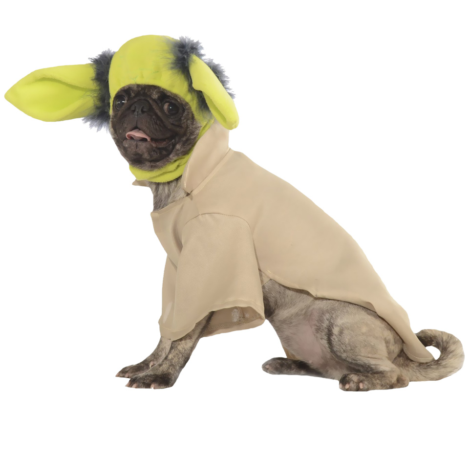 Yoda Dog Costume - Large im test