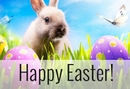 Your Pet Guide to A Happy Easter