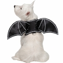 Zack & Zoey Bat Glow Wings Harness Dog Costume - Small