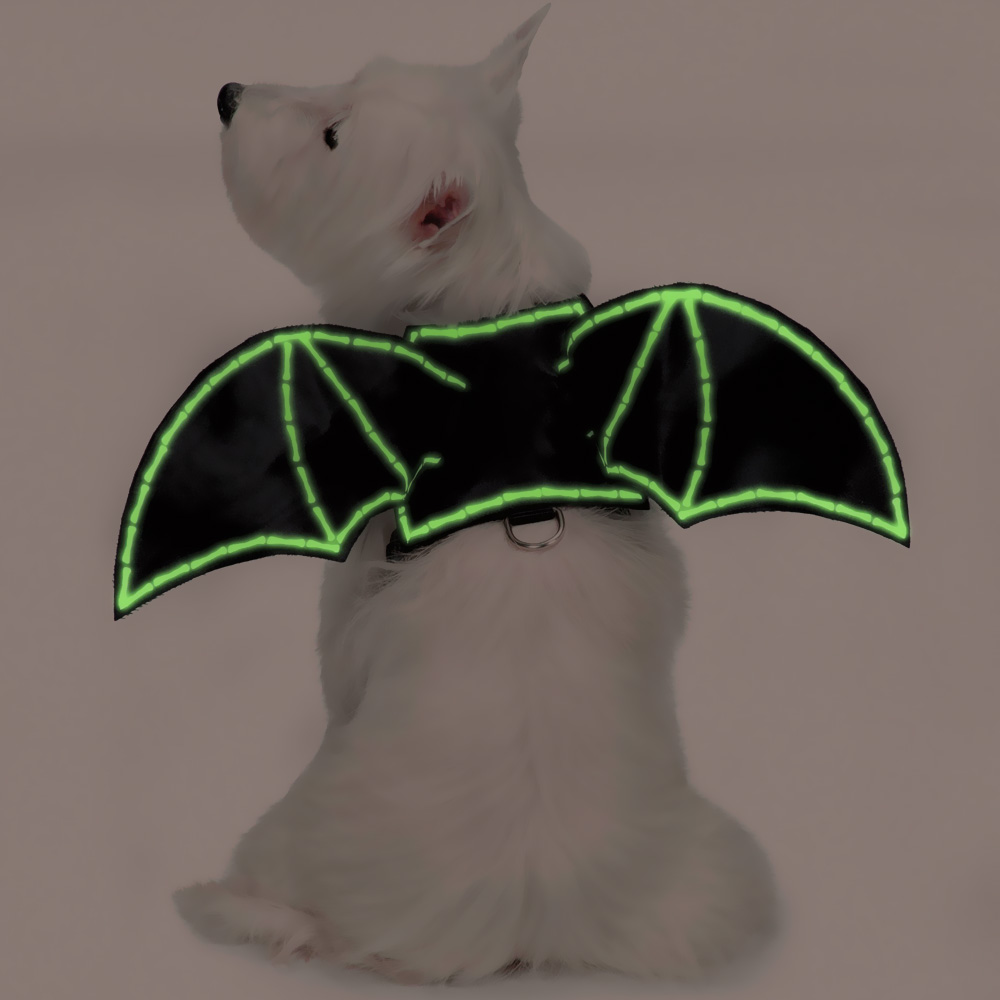 BAT-GLOW-WINGS-HARNESS-COSTUME-SMALL