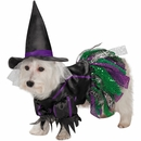 Zack & Zoey Scary Witch Dog Costume - Large
