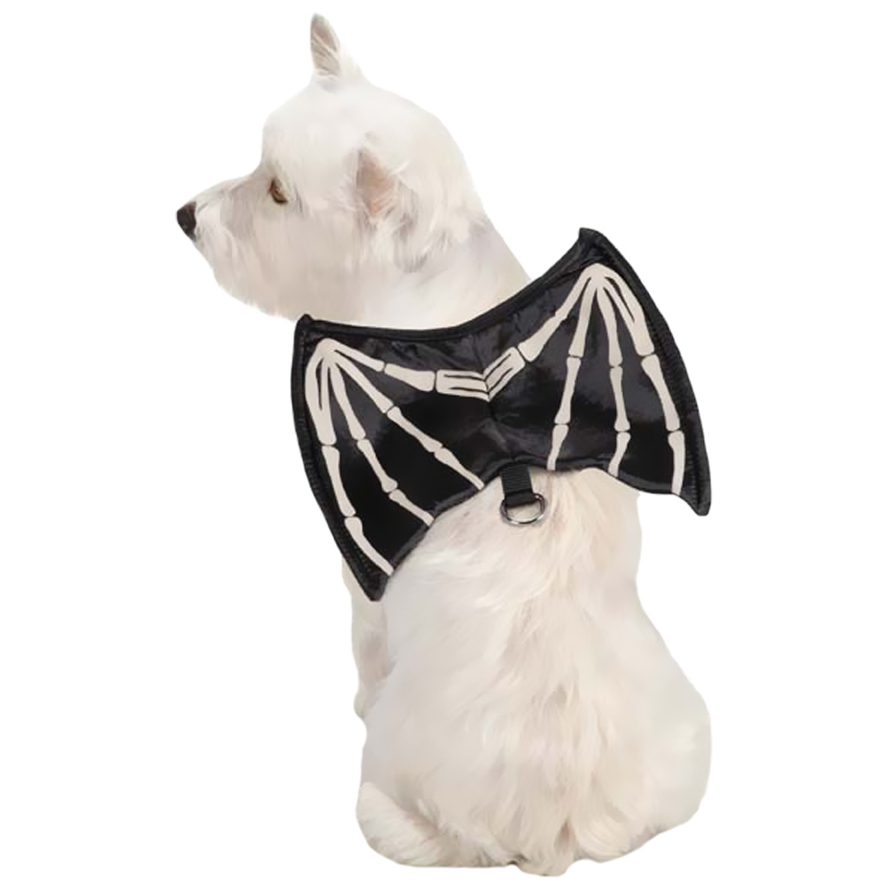 ZACK-ZOEY-SKELETON-GLOW-WING-HARNESS-COSTUME-SMALL