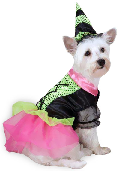 Zack & Zoey Witchy Business Costume Green