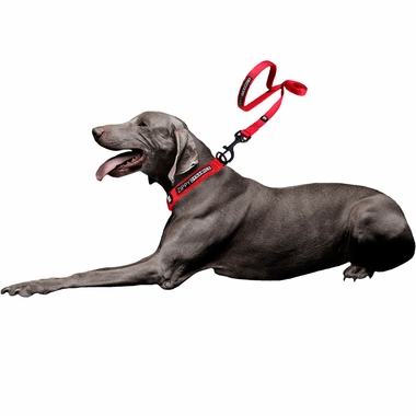 ZIPPY-DYNAMICS-ZIPPY-LEASH-RED-48-INCHES