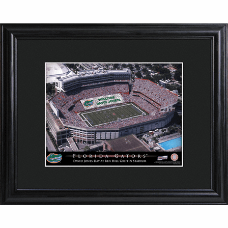 Personalized College Football Stadium Print with Wood Frame
