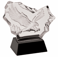 Personalized Etched Flying Eagle Award