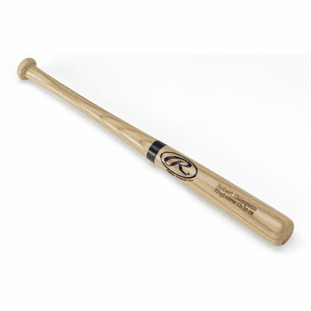 Personalized Rawling's Mini Baseball Bat