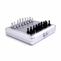 Stainless Steel Travel Chess & Backgammon Set - Discontinued