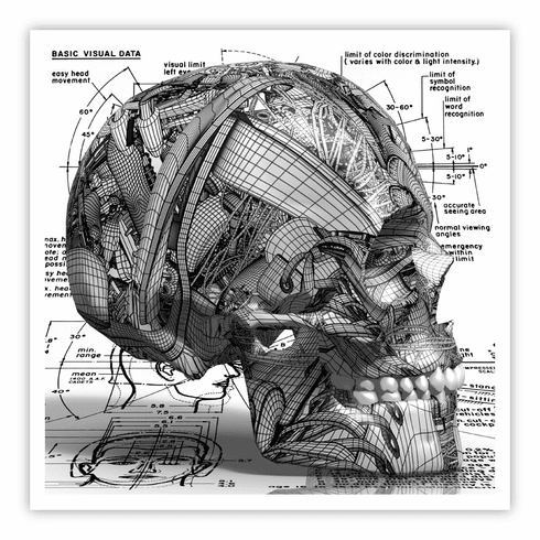 SKULL by Peter Stanick