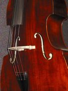 Eastman Model VB95 Antiqued Upright Double Bass Carved Top Hand Rubbed Varnish