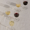 iittala Raami White Wine Glasses (Set of 2)