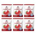 Legacy 22 Serving Freeze Dried Strawberries - 6 Pack