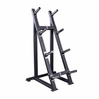 Body Solid GWT76 High Capacity Plate Tree $365.00