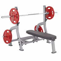 SteelFlex NOFB Flat Olympic Bench $999.99