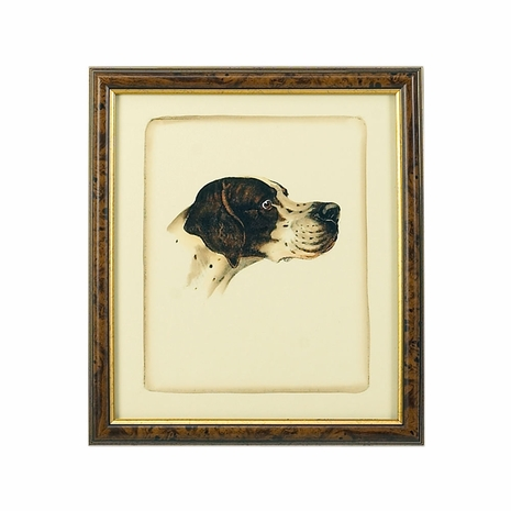 380359 Chelsea House Hand Colored Print Brown And Gold Frame Danchin Pointer