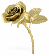 495687-BRH Jonathan Charles Curated Polished Brass Blooming Rose