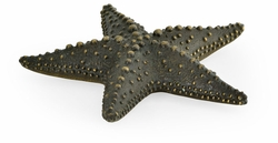 495773-DKB Jonathan Charles Curated Dark Bronze Starfish