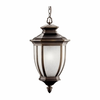 9843RZ Kichler Traditional Outdoor Hanging Pendant 1Lt