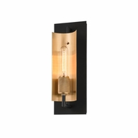 B6781 Troy Hand-Worked Iron And Brass Interior Emerson 1Lt Wall Sconce with Carbide Black & Brushed Brass Finish