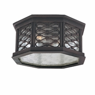 C2370OI Troy Hand-Worked Iron Exterior Los Olivos 2Lt Ceiling Flush with Old Iron Finish