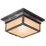 CF9000OBZ Troy Hand-Forged Iron Exterior Newton 2Lt Flush Flourescent W/Amber Mist Glass with Old Bronze Finish