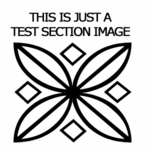 Test Section