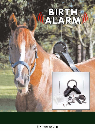 Birth Alarm System