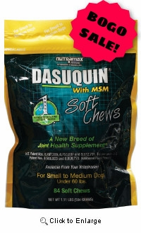 Dasuquin® Soft Chews With MSM for Small/Medium Dogs 84ct