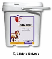 DMG 3000 Supplement 4lb