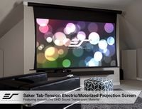 Acoustic Electric Screens