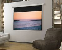 Draper Salara Hard Wired Series Screens