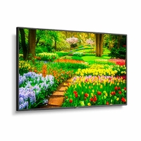 """NEC 49"""" Ultra High Definition Professional Display with Integrated ATSC/NTSC Tuner - M491-AVT3"""