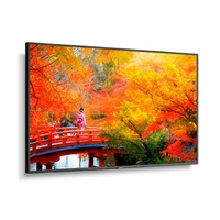 """NEC 49"""" Wide Color Gamut Ultra High Definition Professional Display - MA491"""