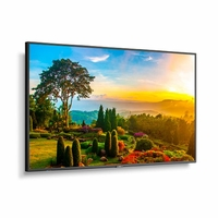 """NEC 55"""" Ultra High Definition Professional Display with Integrated ATSC/NTSC Tuner - M551-AVT3"""
