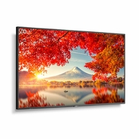 """NEC 55"""" Wide Color Gamut Ultra High Definition Professional Display with integrated SoC MediaPlayer with CMS platform - MA551-MPI4E"""