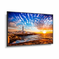 """NEC 55"""" Wide Color Gamut Ultra High Definition Professional Display with integrated SoC MediaPlayer with CMS platform - P555-MPI4E"""