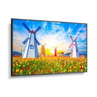 """NEC 65"""" Ultra High Definition Professional Display - M651"""