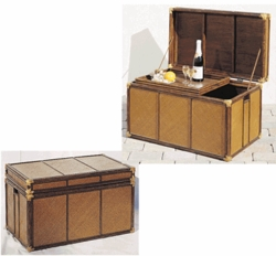 Safari Storage Trunk (UPS $30)