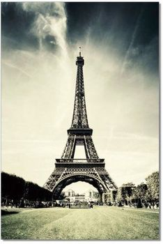 Premium Acrylic Wall Art Eiffel Tower - SH - 71553