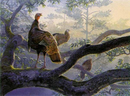 """Al Agnew Handsigned and Numbered Limited Edition Print: """"Out on a Limb"""""""