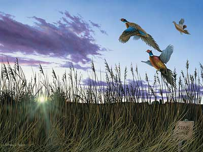 """Anthony J. Padgett Handsigned and Numbered Limited Edition Print:""""Morning Glory-Pheasants"""""""