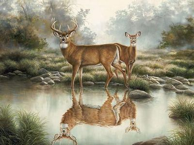 """Rosemary Millette Master Artisan Hand Embellished Canvas Giclee:""""Tranquil Waters"""""""