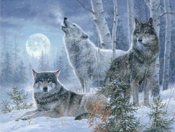 "Abraham Hunter Hand Signed and Numbered Limited Edition Embellished Canvas Giclee:""Winter Moonrise"""