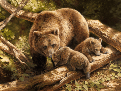 """Bonnie Marris Hand Signed Limited Edition Canvas Giclee:""""Born To Be Wild"""""""